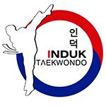 Induk Taekwondo